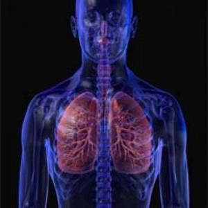 solodka-golaya-pri-bronhialnoy-astme