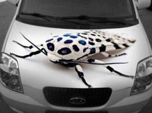 Оклейка авто винилом в Тюмени: сделайте ваш автомобиль запоминающимся!