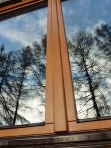 Окна из дуба в Вологде