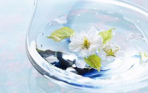 Цветочная вода для ухода за кожей и волосами! Большой выбор для любых типов кожи!