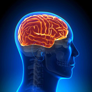 Пройти МРТ головного мозга в Орске