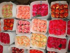 Магазин «Цветы Мира» обращает внимание покупателей цветов в розницу и предлагает покупку цветов упаковками по оптовым ценам!
