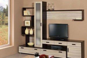 Изготовление корпусной мебели для гостиной в Орске