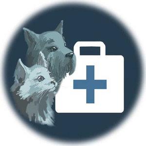Вызов ветеринарного врача