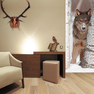 Магазин обоев «ДекориЯ» приглашает всех Кемеровчан за уникальным декоративным панно на стену!