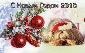 """Компания """"Модуль Плюс"""" Поздравляет Вас с Новым Годом!!!"""
