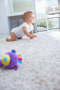 Химчистка ковров, мягкой мебели, матрасов, игрушек и жалюзи на дому!