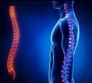 Лечение остеохондроза в Туле