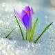 Выгодный март!!