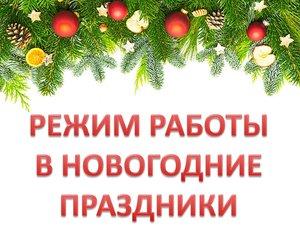 Расписание занятий и мероприятий в Новогодние каникулы!