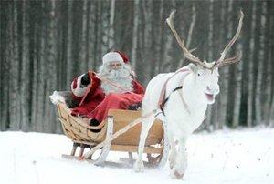 Новогодние и рождественские праздники на курортах Финляндии
