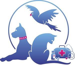Ветеринарная консультация в Туле - первая помощь для Вашего питомца!