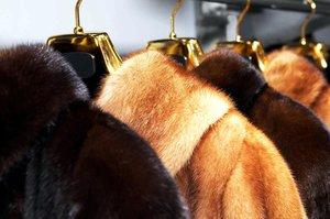 Ремонт шуб и меховых изделий в Вологде