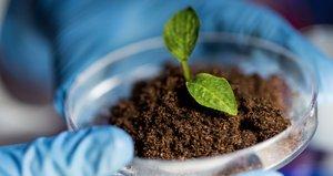 Радиологические исследования почвы и воды в Вологде