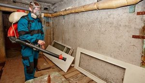 Санитарная обработка подвальных помещений от блох!