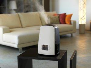 Идеальный увлажнитель воздуха для квартиры