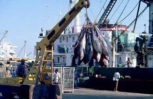 ПОЛАРИС» - рыбодобывающее предприятие с отличными ценами и репутацией!