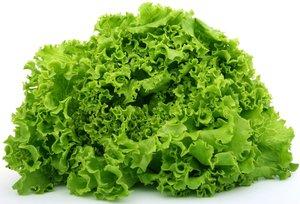 Стаканчики для выращивания салата: оптом, собственное производство!