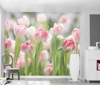 Печать фотообоев в «Sprint»: уникальный дизайн для дома и офиса!