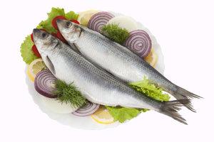 Польза рыбы сельдь