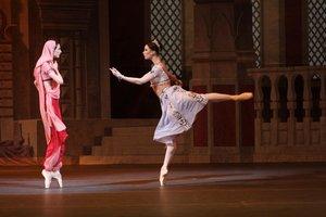 Киноверсия балета «Баядерка» в Ясной Поляне