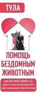 В Туле пройдет акция «Большая помощь маленькому другу»