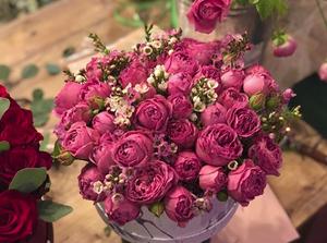 """Цветы в цветочном доме """"Dom Shumov"""""""