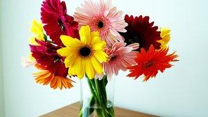 Доставка цветов. Доставка букетов. Приятный сюрприз по любому поводу! Цветы