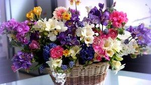 Где купить цветы? В магазине цветов «Цветочный рай»