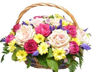 Заказ цветов с бесплатной доставкой по Вологде