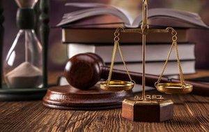 Профессиональная консультация юриста в Туле