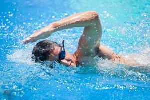 Свободное плавание в Вологде. Запись по телефону!