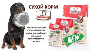 Корм RACIONIQ (Рационик) для собак