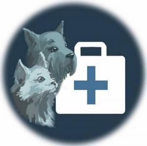 Лечение животных в Туле - гарантия отличного самочувствия Вашего питомца!