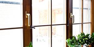 Заказать окна из дуба в Вологде