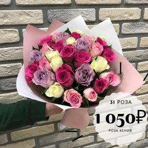 31 роза Кения 32 см в красивом оформлении!