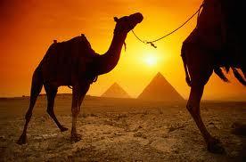 Египет (Шарм-эль-Шейх) их Самары. Вылет 2 декабря на 13 ночей от 16 500 на человека!