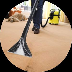Мечтаете о том, чтобы ваш ковер снова был идеально чистым? Выбирайте химчистку ковров в Череповце от нашей компании!