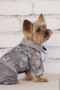 Купить одежду для животных в Орске