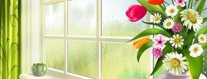 Помоем окна вам БЕСПЛАТНО в честь 8 марта!