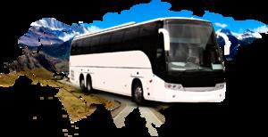 Международные пассажирские перевозки