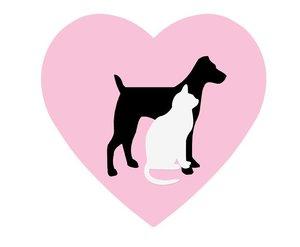 Берегите любящее сердце вашего любимца, посещайте врача-кардиолога!