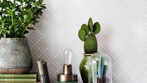 Оформление интерьера с новой коллекцией Eco Soft Surface.