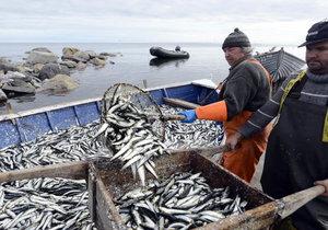 Поларис – рыбная компания