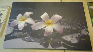 Печать картин и фотообоев