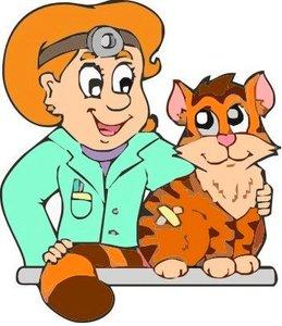 Диагностика животных в Туле - оперативно, точно, доступно!