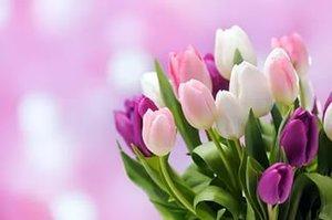Заказывайте цветы заранее!!!