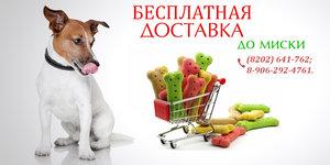 Бесплатная доставка кормов и товаров для животных