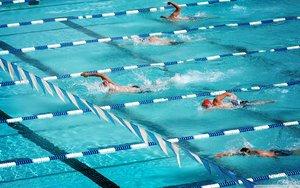 Занятия свободным плаванием