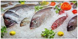 Купить рыбку в Орске